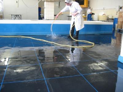 Boden in der Fischverarbeitung